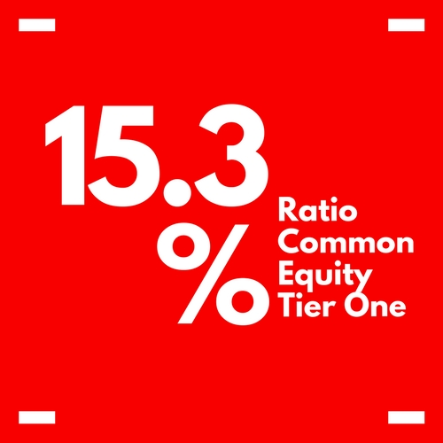 RATIO COMMON EQUITY
